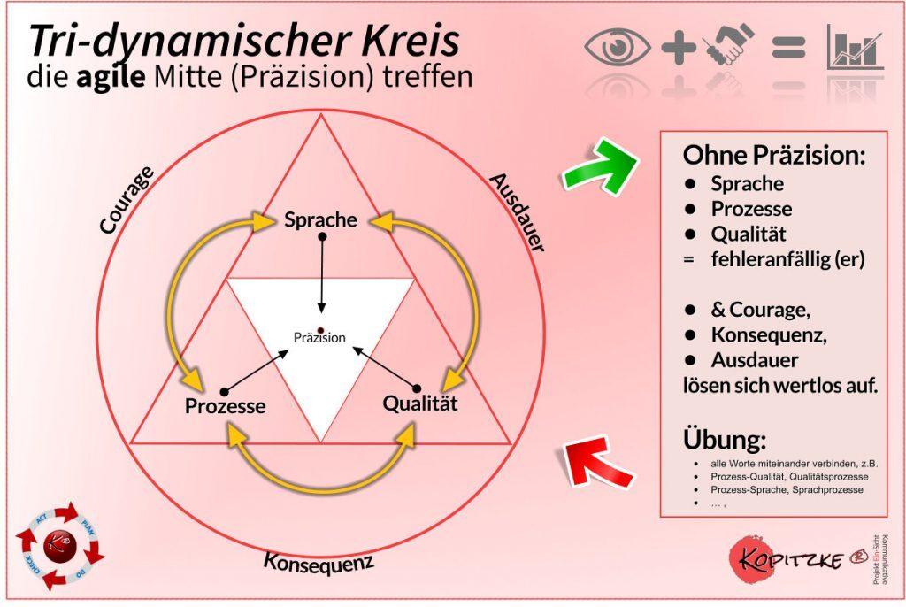 Tri-Dynamischer Kreis in der Agilität